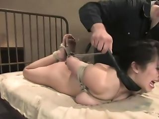 Amy, Babe, BDSM, Cute, First Timer, Hogtied, Innocent, Mai Ly,