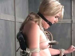 BDSM, Beauty, Blonde, Cute, Horny, Punishment, Sasha Heart, Slut, Submissive, Torture,