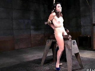 BDSM, Bondage, Fetish, Pussy, Rough, Torture,