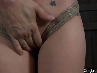 Bdsm, Bondage, Fetisch, Hailey Young, Muschi, Rau, Submissiv, Folter,