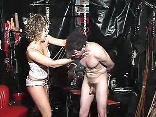 Ballbusting, BDSM, Brutal, Domination, Femdom, Fetish, Mistress, Romantic, Submissive,
